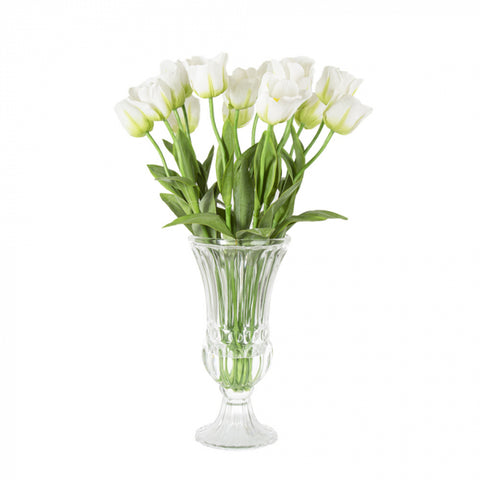 Cheshire Tulips White