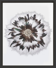 Macadamia Feathers White in Black Frame