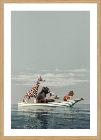 Trio Horse Photographic Print with Frame