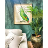 Bird Study Framed Print