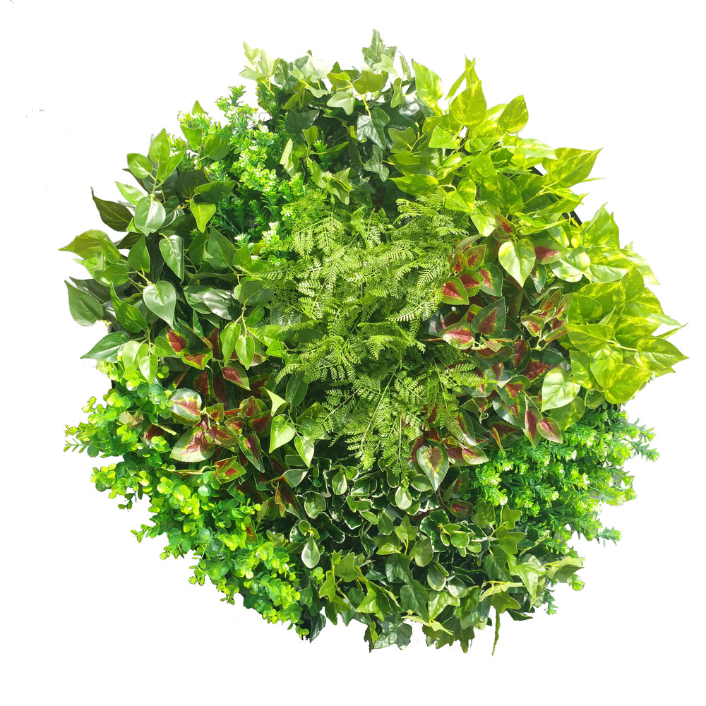 Artificial Indoor Green Wall Disc Art Mixed Ivy and Fern 100cm