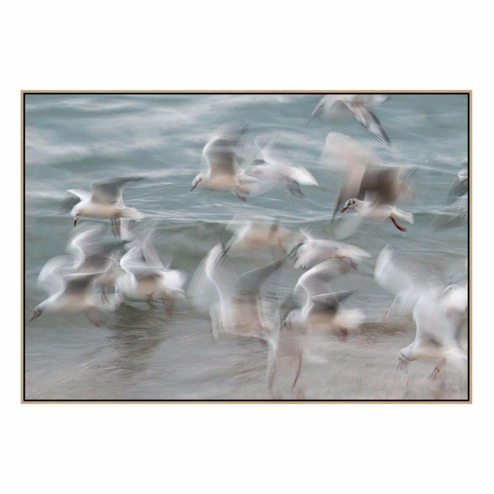 Birds Canvas Print with Floating Frame