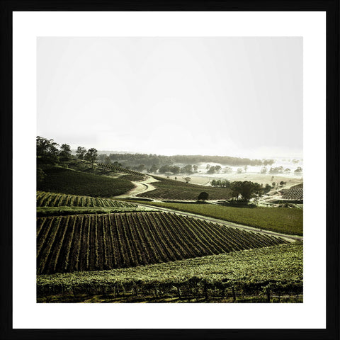 Hunter Valley NSW Photographic Print with Frame