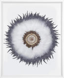 Latope Feathers White in White Frame