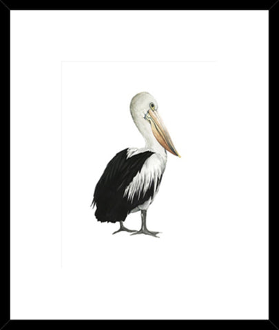 Sea Bird VI Framed Print