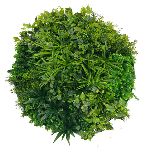 Artificial Indoor Green Wall Disc Art Mixed Fern 80cm