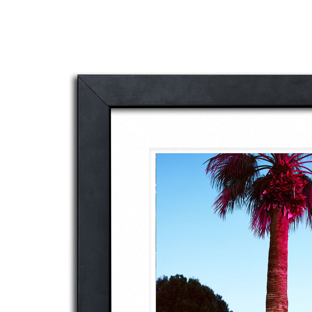 Pink Palm Framed Photographic Print