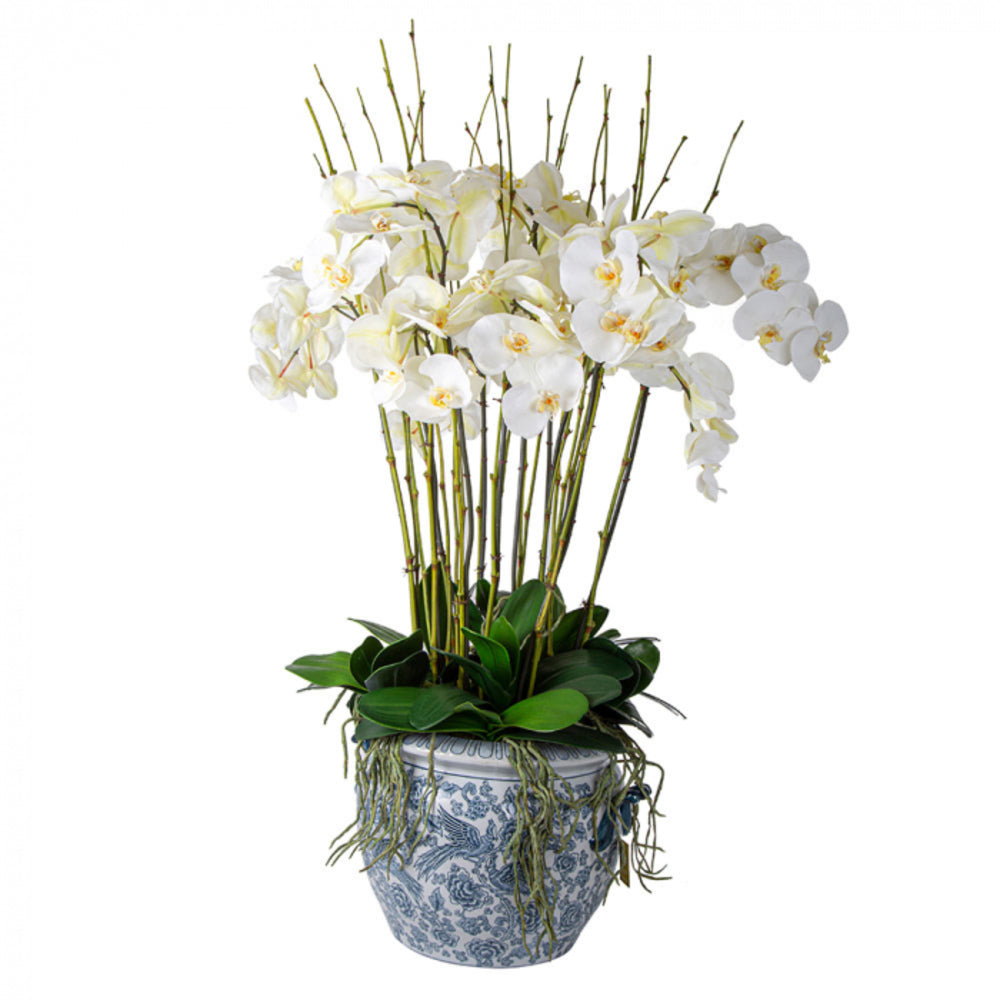 White Orchids in Aviary Planter