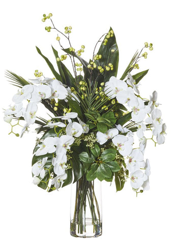 Exotic Phalaenopsis Mix in Strata Vase Large White