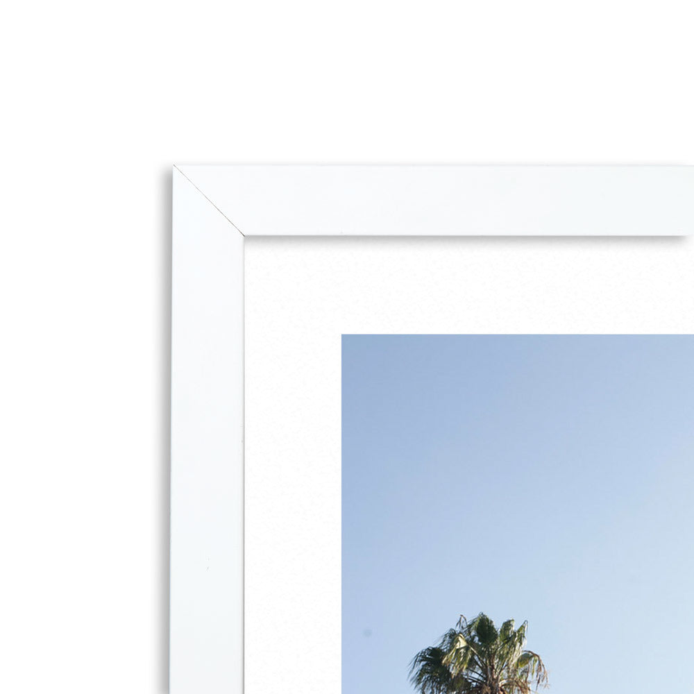 Palm 2 Framed Photographic Print