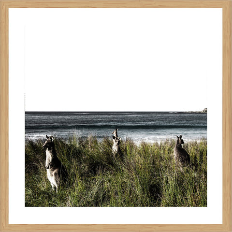 King George River WA Photographic Print with Frame