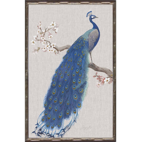 Peacock I Framed Print