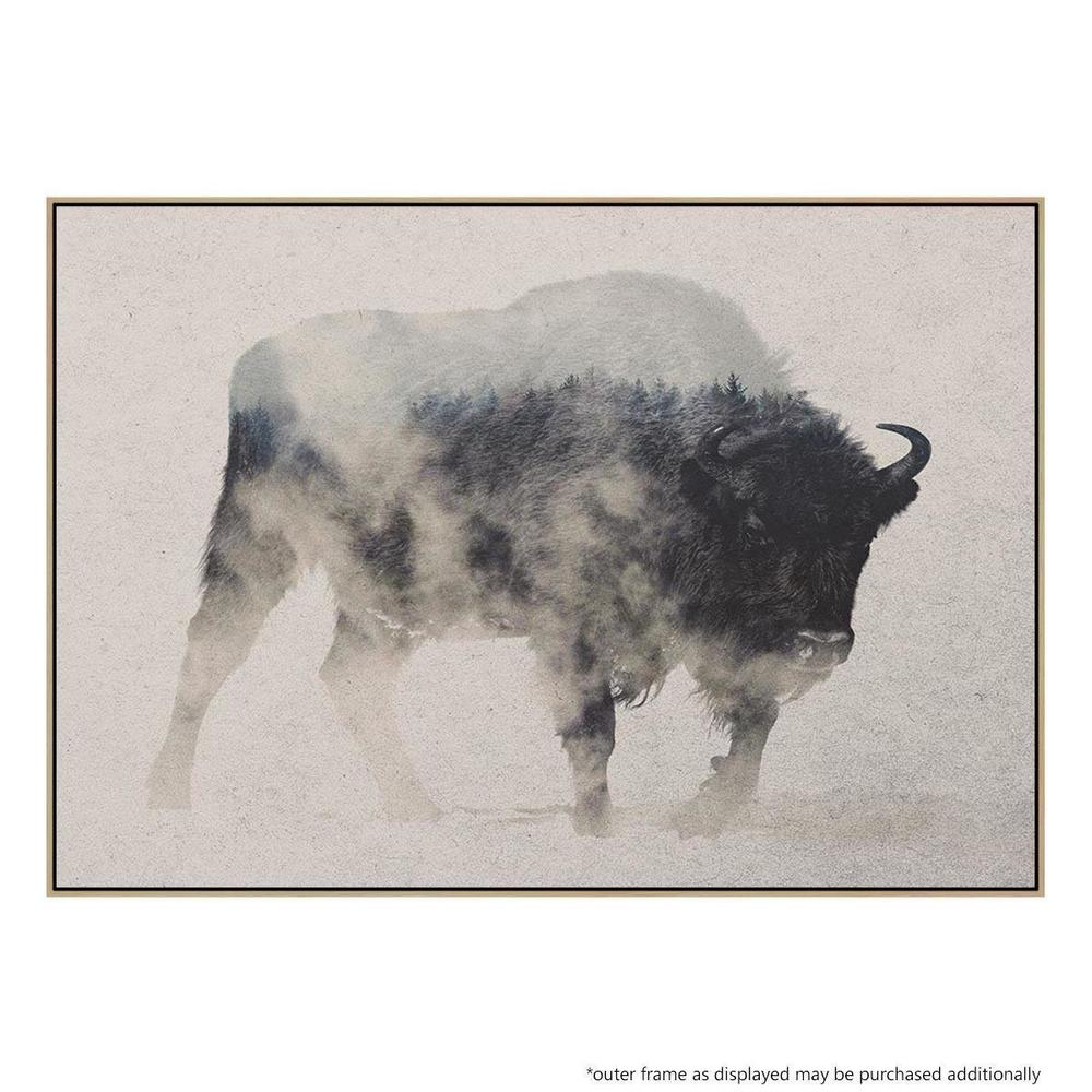 Bison In the Fog Canvas Print with Floating frame