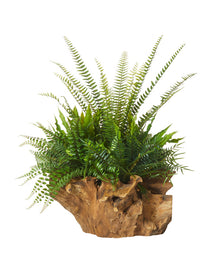 Fern Mix Stump Planter