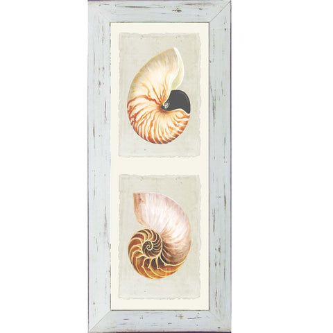 Shell Duo Print 1