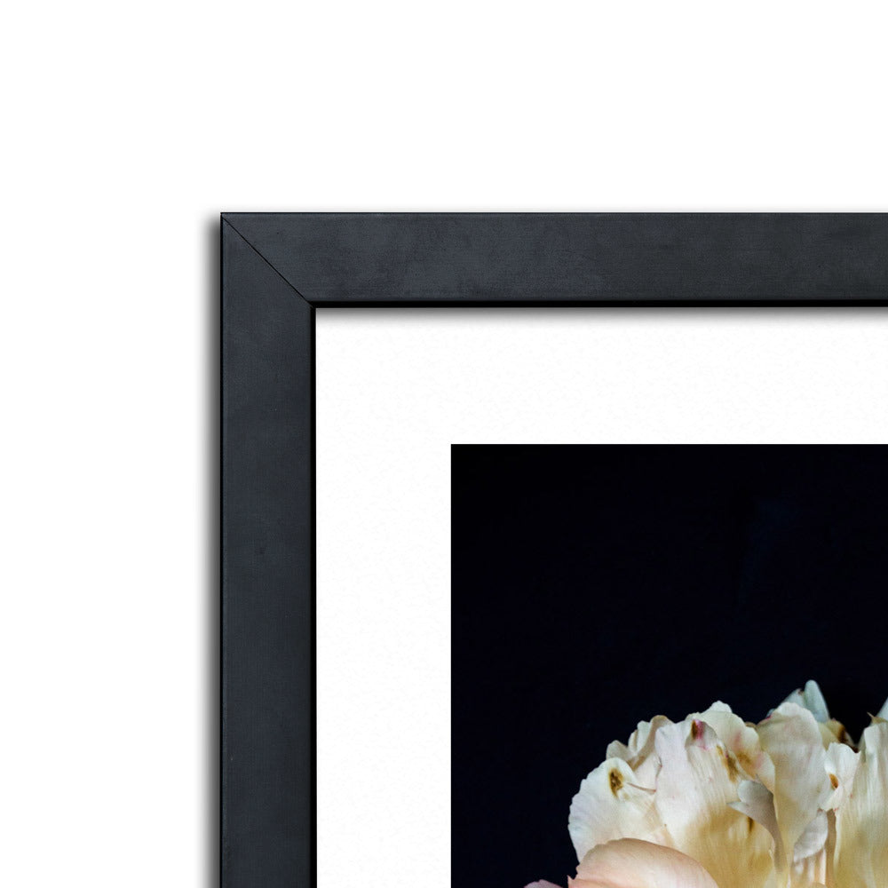Weaver 3 Framed Photographic Print