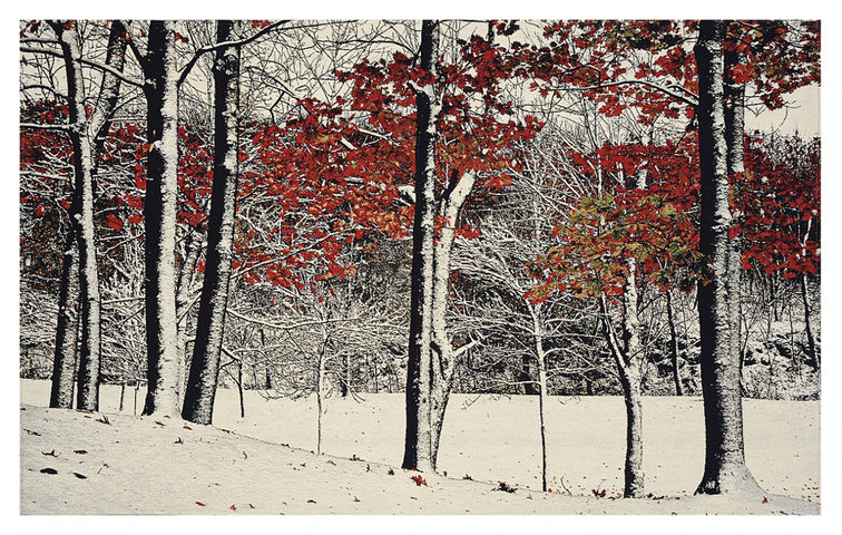 Snowfall Tapestry with Rod