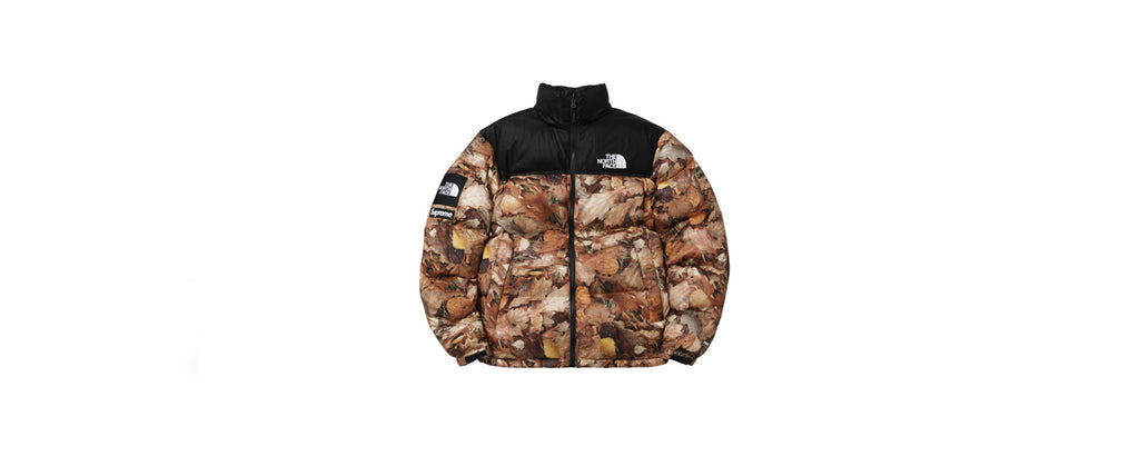"Supreme/The North Face ""Leaves"" Jacket"