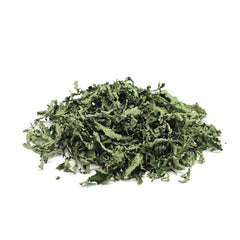Peppermint (Menthae piperitae folium) Dried Leaves 100g 3.55oz | Biokoma.com