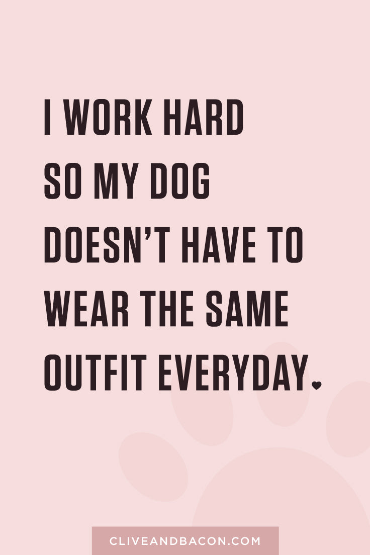 I work hard so my dog doesn't have to wear the same outfit everyday. By Tina Chen, Clive & Bacon