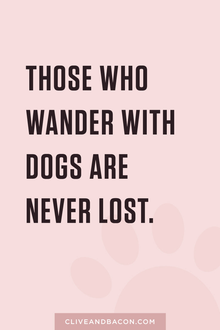 Those who wander with dogs are never lost. By Tina Chen, Clive and Bacon