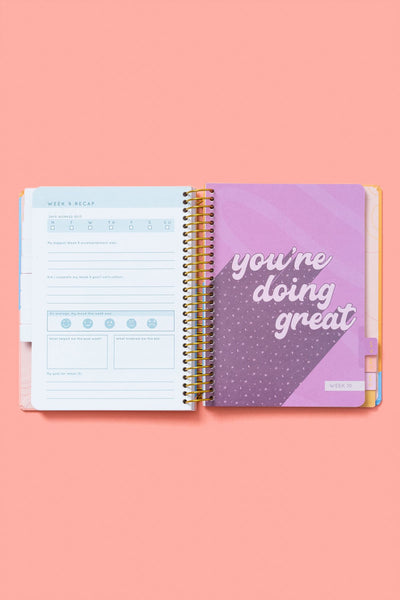 90 day journal