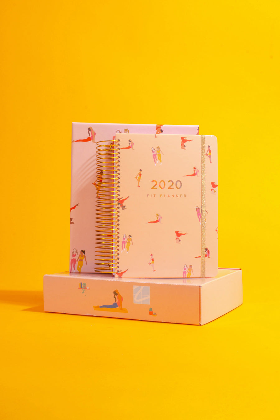 2020 Fit Planner + Sticker Bundle
