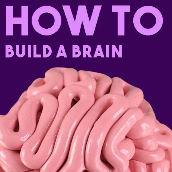 HOW TO: Build a Brain with Thinking Putty