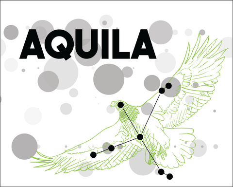 Aquila Constellation Card