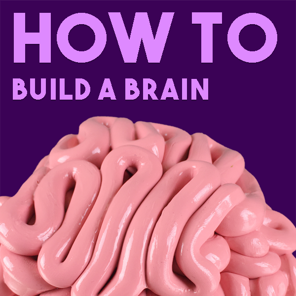 Explore Puttyworld | How to Build a Brain