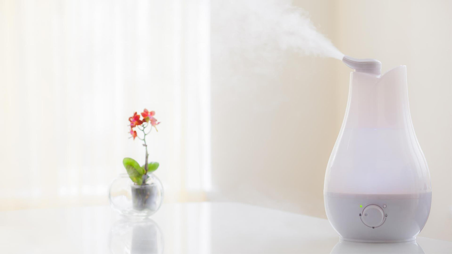 Improve Your Health And Life With A Humidifier