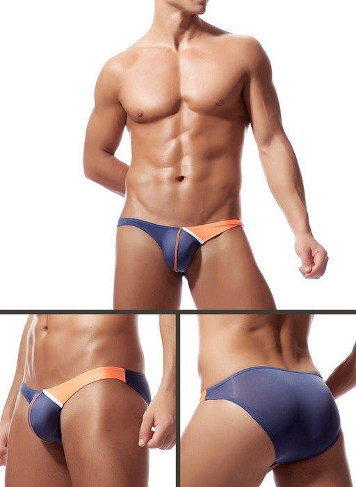 Sexy Transparent Silk Fabric Briefs Panties Underwear for Men Gay - SolaceConnect.com