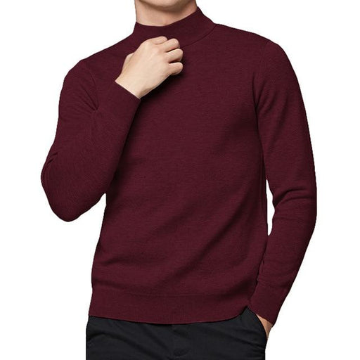 Pullover Sweater Men Cotton Knitted Slim Sweater Turtlenck Men Pullover Autumn Highneck Men Sweaters - SolaceConnect.com