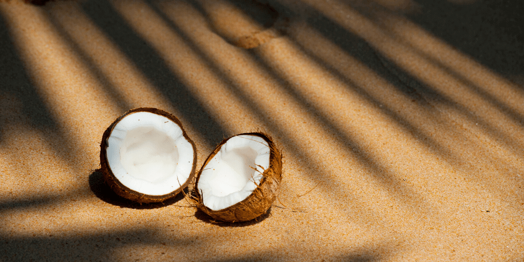 benefits of coconut in skincare