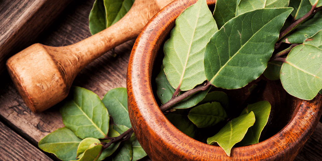 bay leaves hair benefits