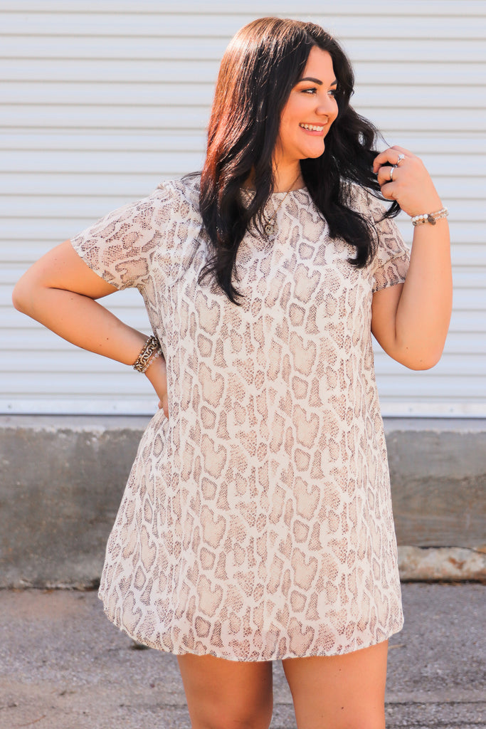 CURVY: Have The Advantage Shift Dress