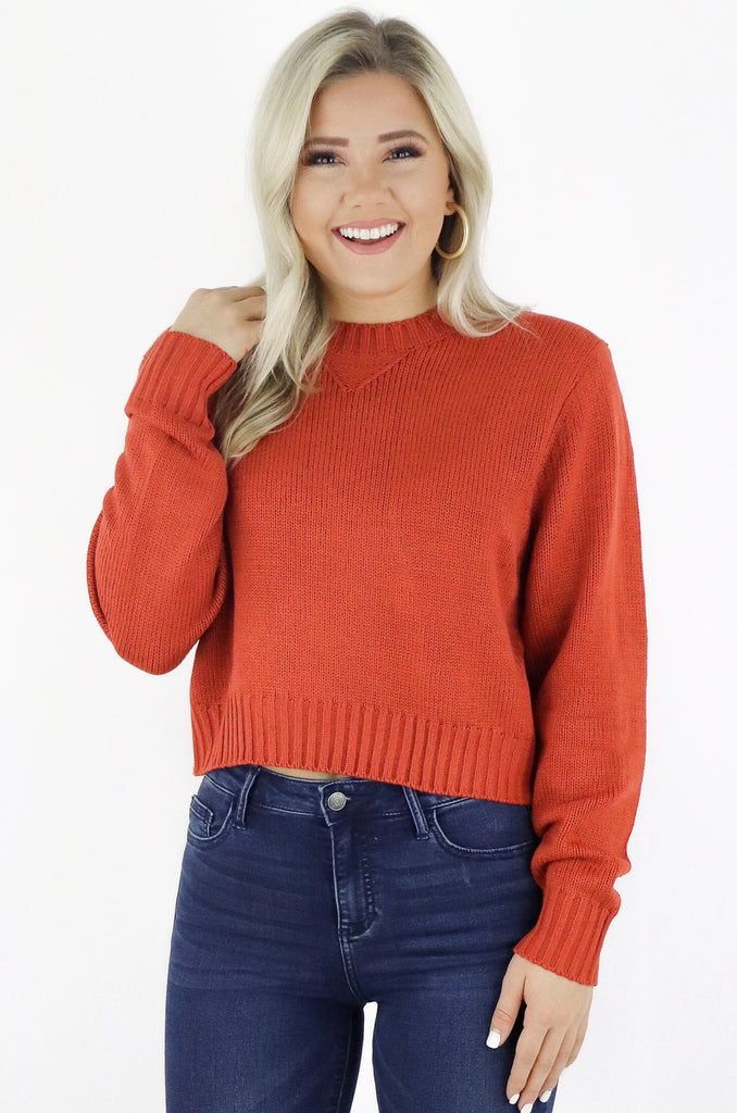 Simply Wishing Crop Sweater