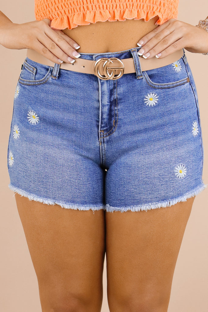 Beautiful Wonders Embroidered Shorts