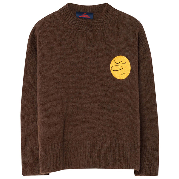 Boys & Girls Brown Sweater