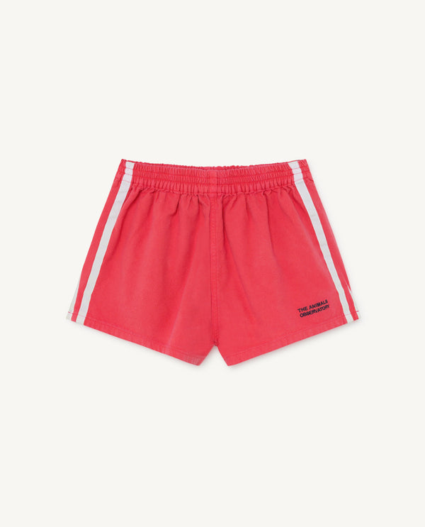Boys & Girls Red Cotton Shorts