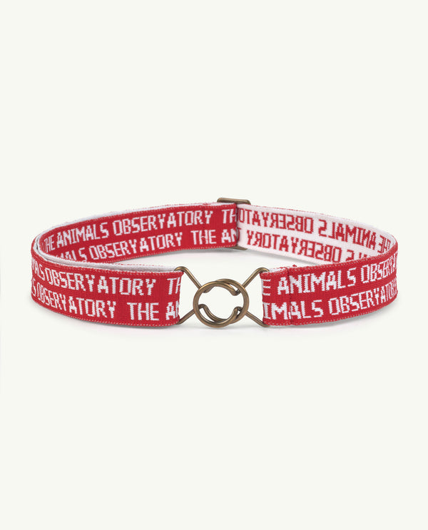 Boys & Girls Red Belt