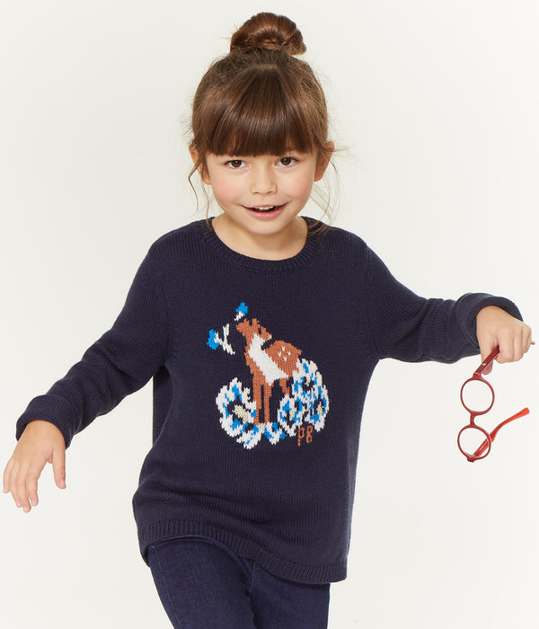 Girls Blue Embroidered Cotton Sweater