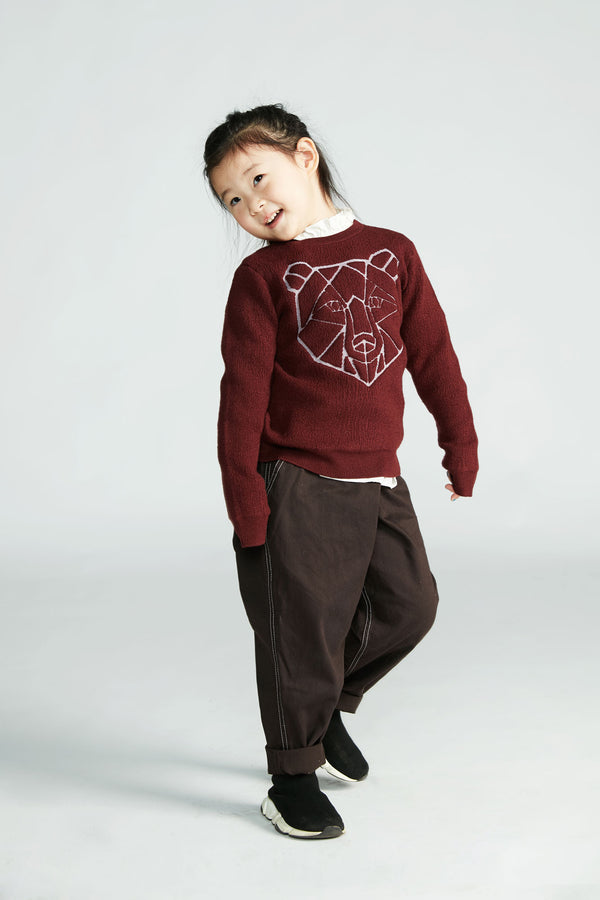 Boys Wine Red Printed Sweater