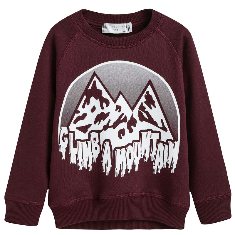 Boys Wine Red Mountain Printed Cotton Sweater