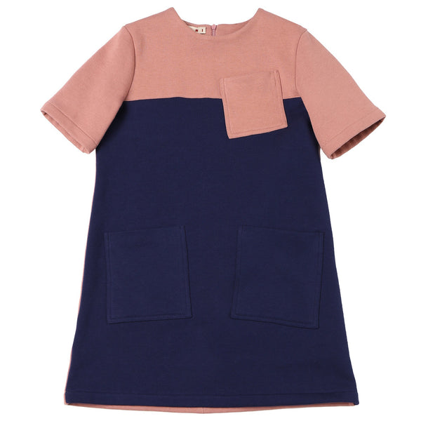 Girls Rose & Blue Cotton Dress
