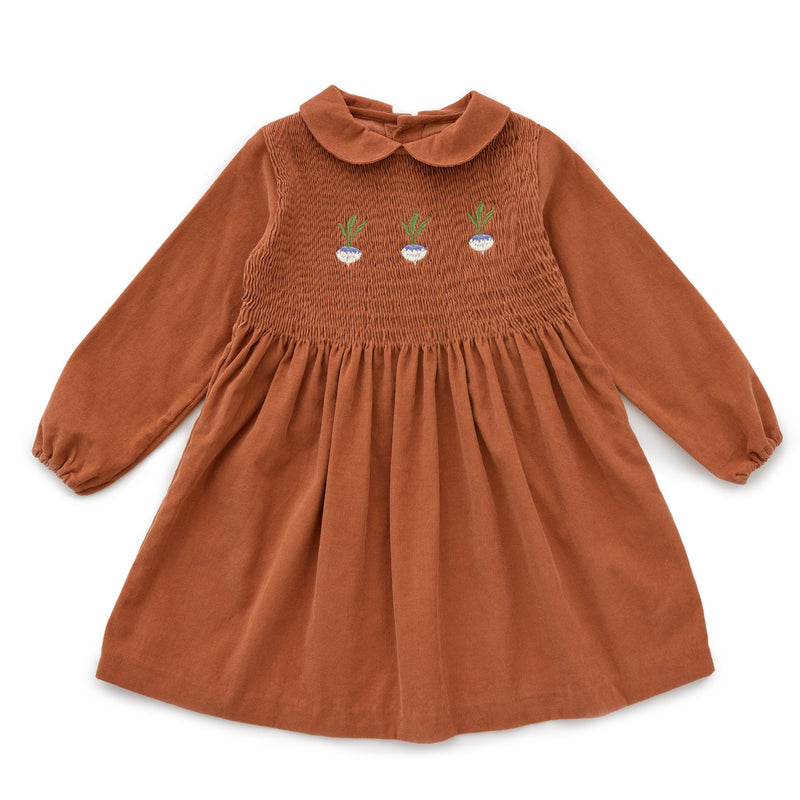 Girls Autumnal Peter Pan Collar Dress