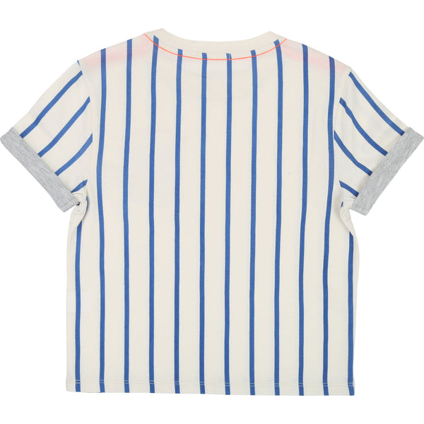 Boys White & Blue Striped Cotton T-shirt