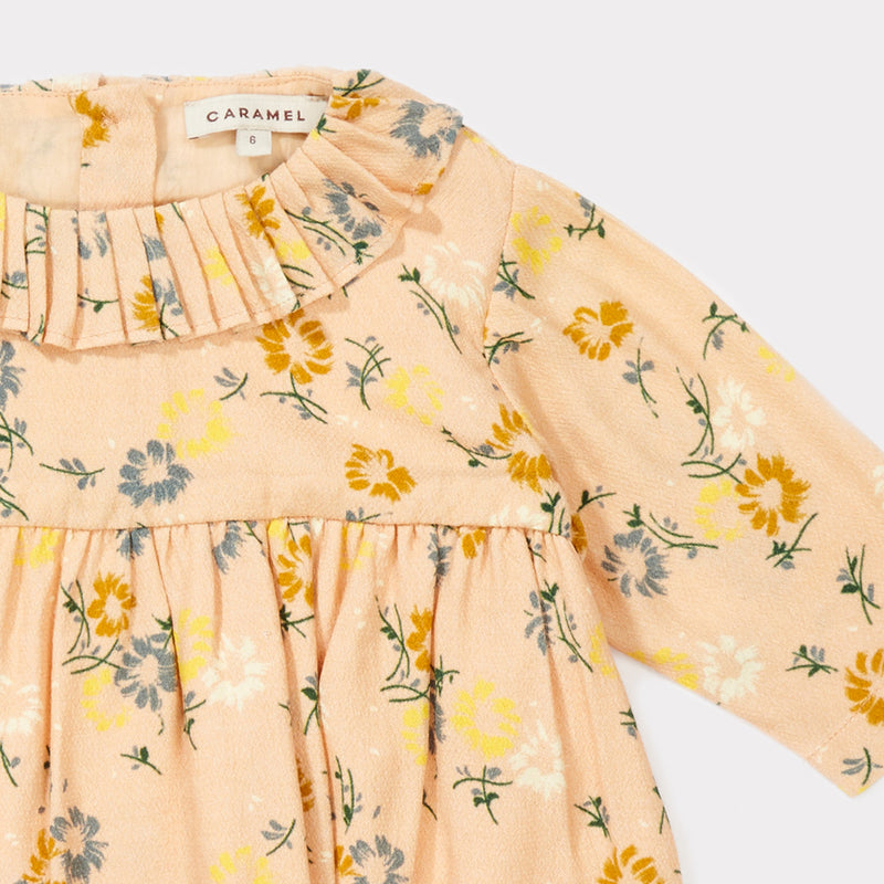 Baby Girls Blush Painted Flower Woven Dress