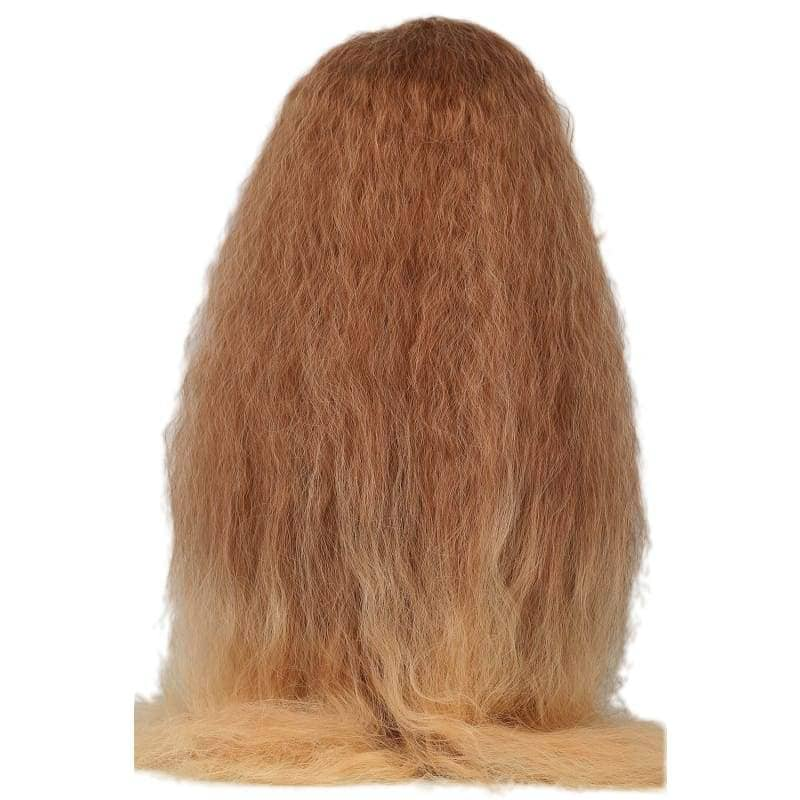 Hermione Wig Harry Potter Granger Long Wavy Brown Costume - Wigs 4