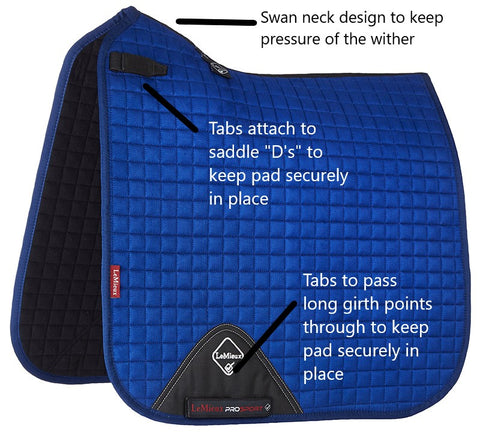 Luxury Suede Dressage Pad BENETTON BLUE M & L